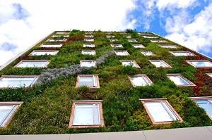 jardin-vertical-Hotel-B3-Virrey-Bogota