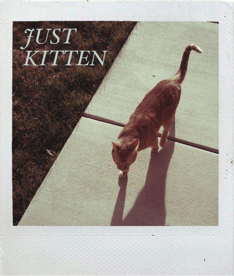 Just Kitten