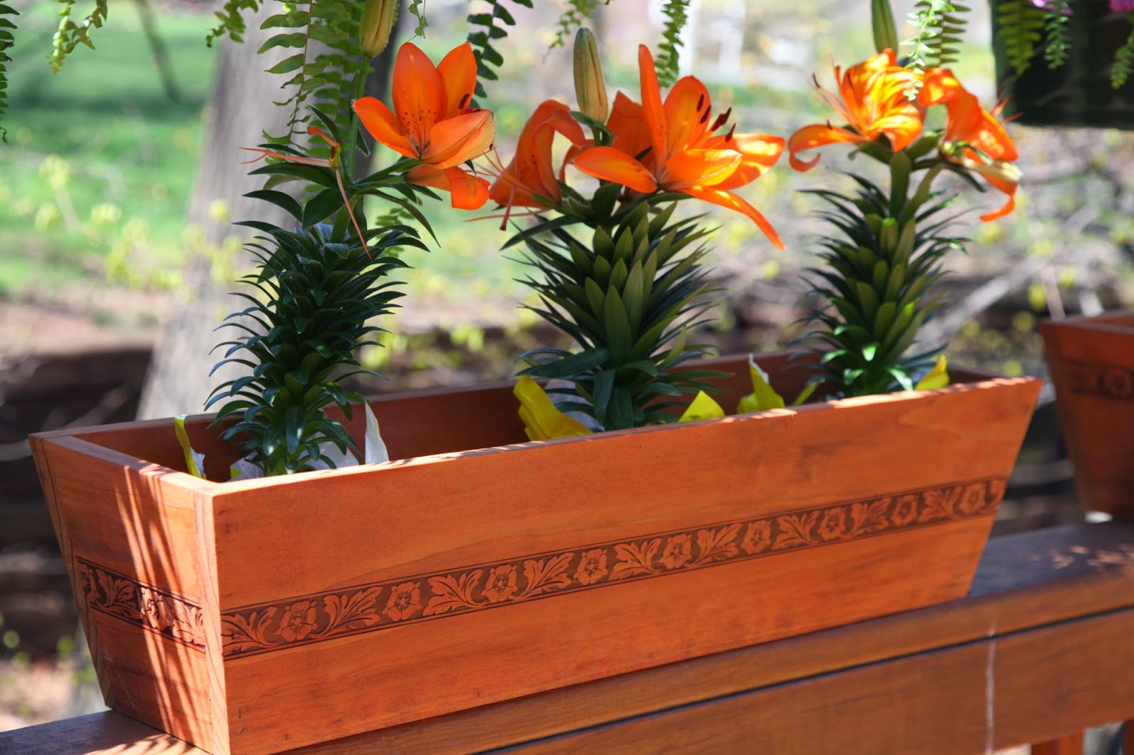 Enter the Redwood V-Trough Deck Planter Giveaway. Ends 6/26