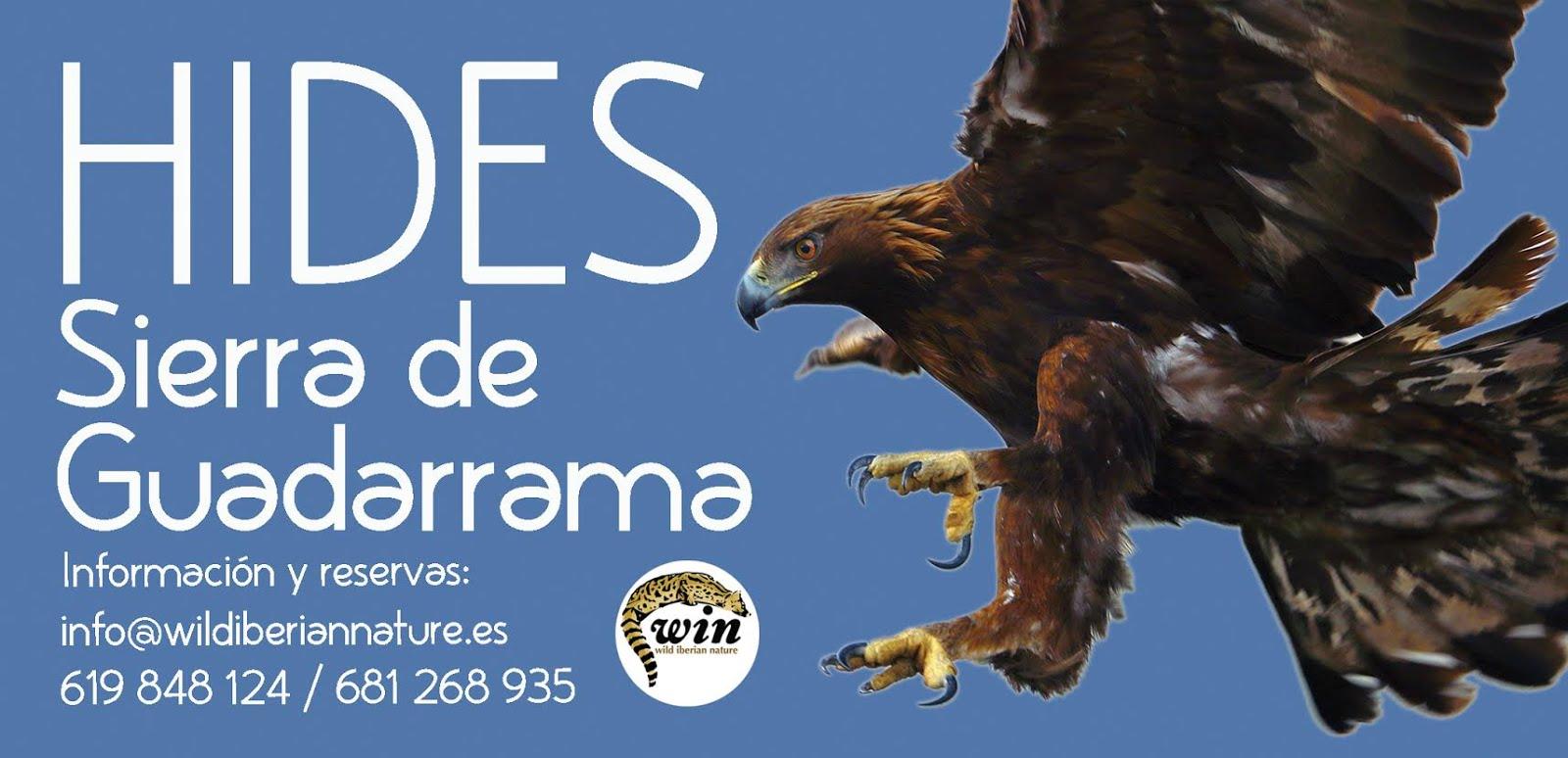 HIDES SIERRA DE GUADARRAMA