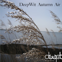 DeepWit Autumn Air