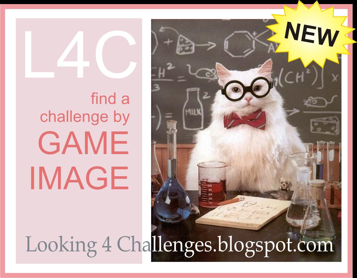 Looking 4 Challenges