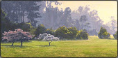 San Francisco Golden Gate Park, Pastel Art Lesson