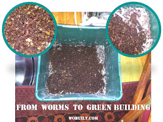 green building: from worm composting to sustainable housing, by wobuilt