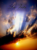 http://lindabertasi.blogspot.it/2015/08/poesia-la-vita-di-linda-bertasi.html
