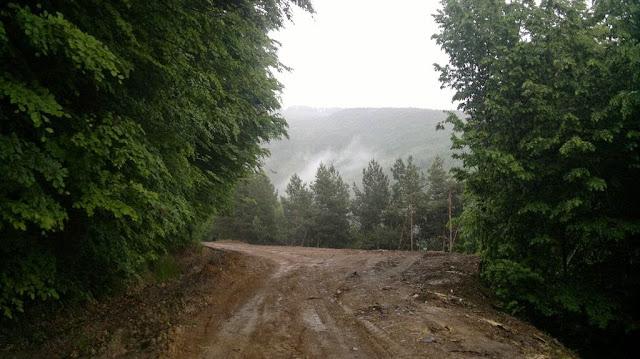 Alergare în zona Nădrag - Padeş, judeţul Timiş. naTura Altfel, ediţie specială. Peisaj