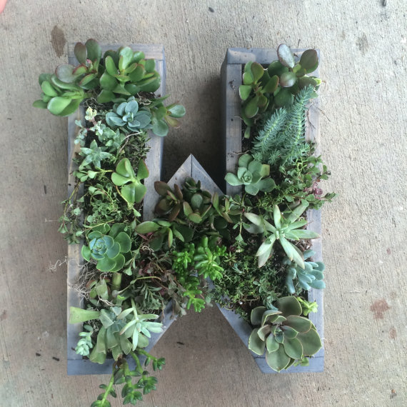 jardines verticales con letras y suculentas jardines