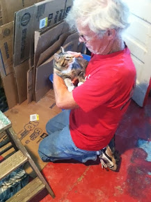 Daddy taming one of the kitties
