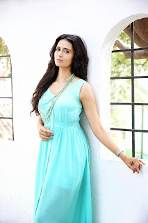 Meenakshi Dixit Latest Pictureshoot Stills  cinegallery99 (5).jpg