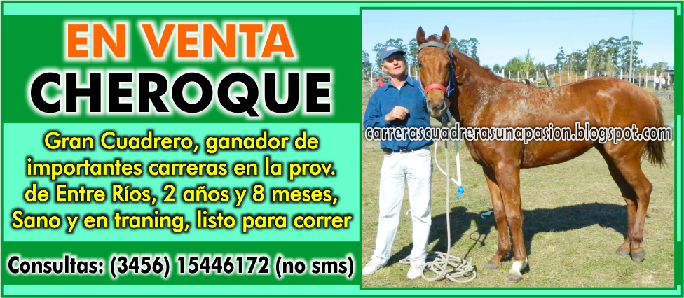 CHEROQUE - VENTA - 08.01.2015