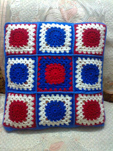 Homely Cushion Case