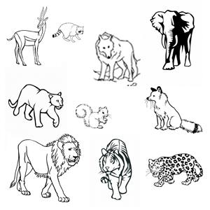 Desene de colorat pentru copii cu animale salbatice de scos la imprimanta