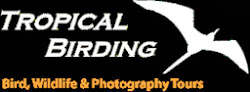 TROPICALBIRDING TOURS