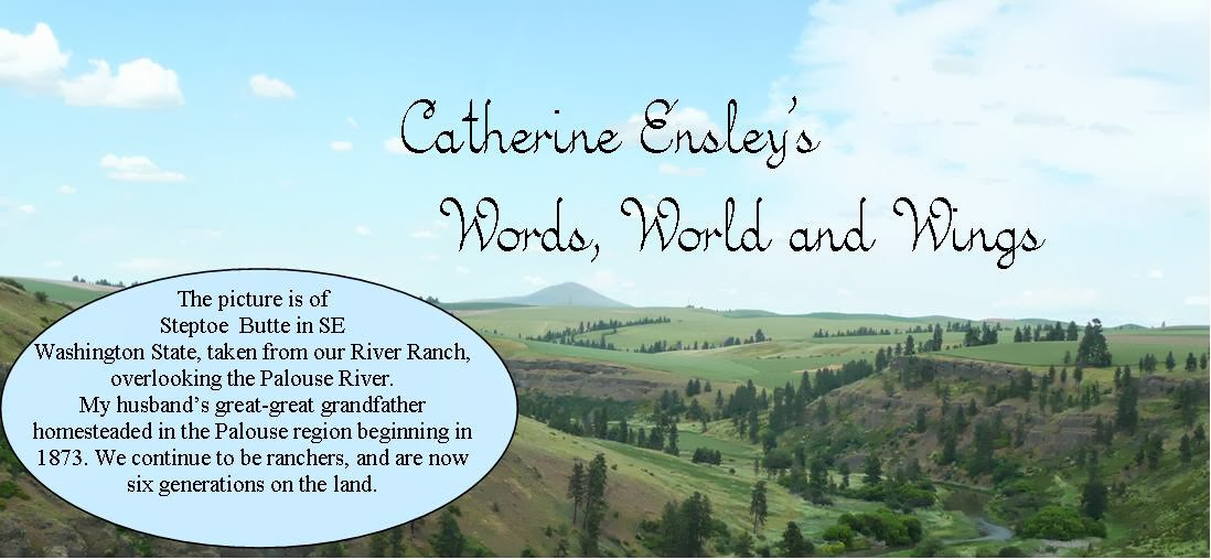 Catherine Ensley's Words World and Wings