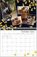 2014_Goma_Calendar_Nov