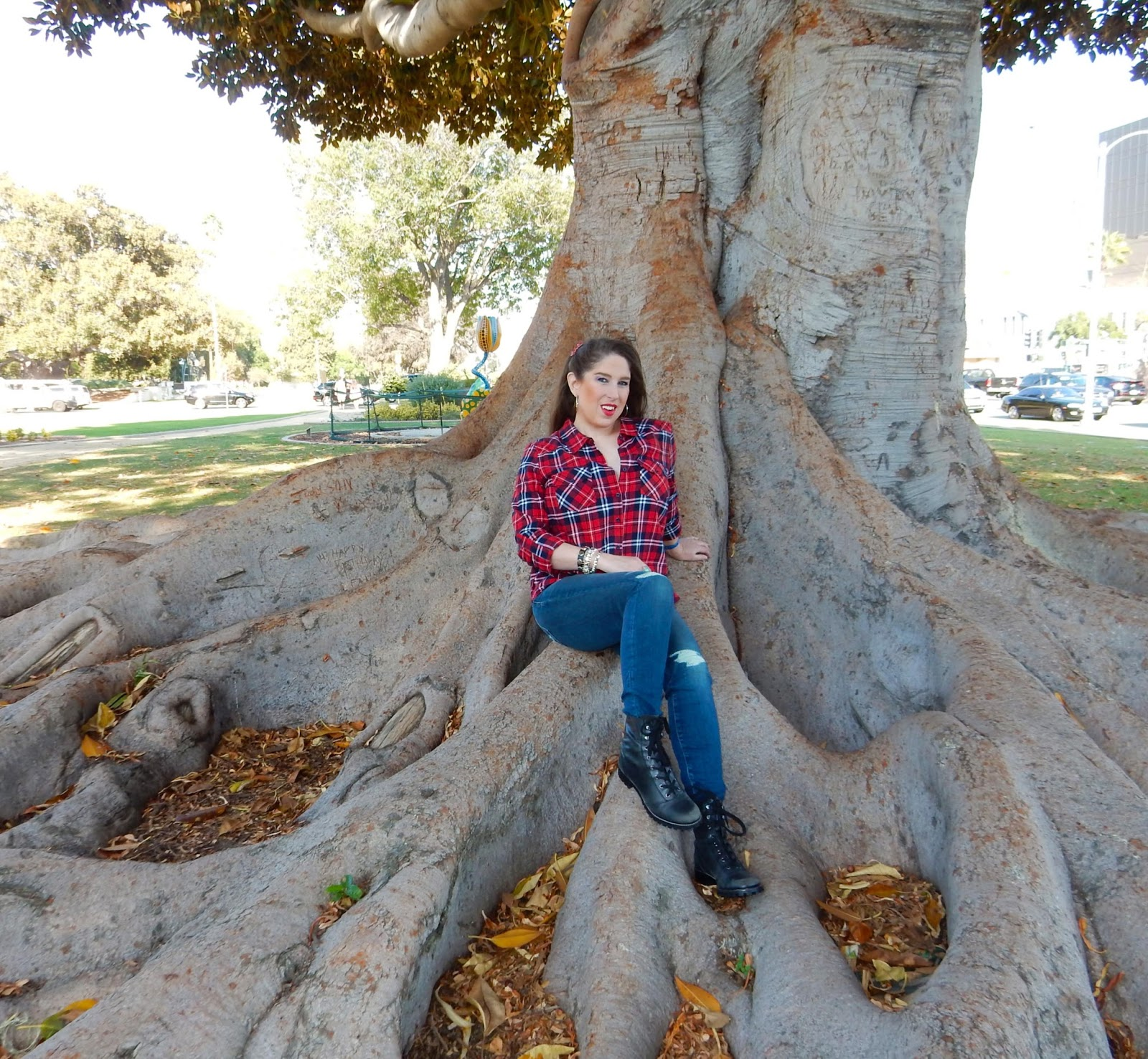 Marc Jacob Lucky Brand Jeans Forever Twenty One largest tree in Beverly Hills