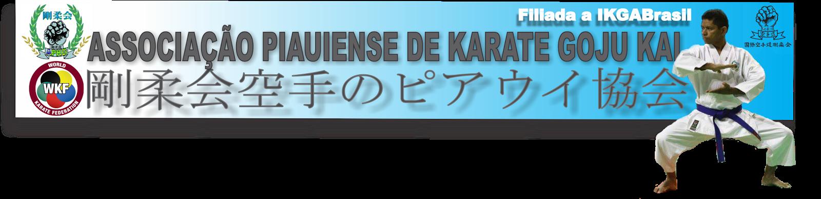 ASSOCIAÇÃO PIAUIENSE DE KARATE GOJU-KAI