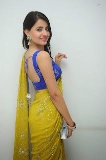 Ruksha Meer sizzling in saree 019.JPG