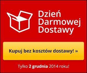 http://www.dziendarmowejdostawy.pl/