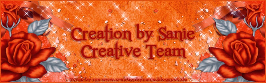 Creation by Sanie CT Team