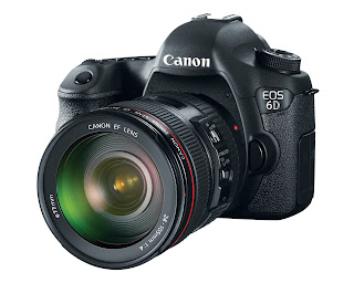 Canon EOS 6D with 24-105 f/4L IS kit lens.