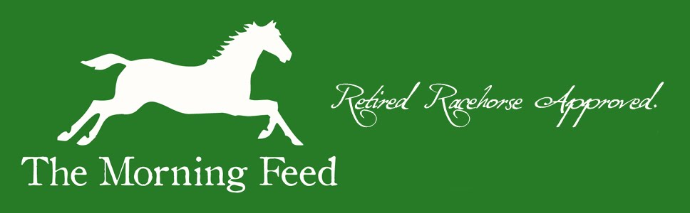 The Morning Feed - Retired Racehorse Adoption