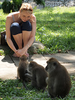 Chatting with monkeys - MacRitchie Park
