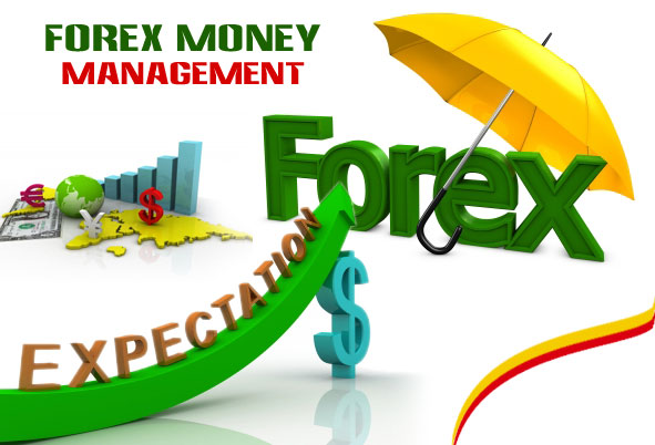 Td forex rates