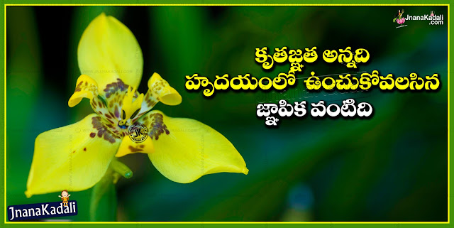 Charecter and Goodness Quotations and Sayings in Telugu,Here is a New Telugu Language Best Goodness Quotations and Character Quotes and Sayings images with Best Thoughts, Inspiring Telugu Goodness Messages Wallpapers, Daily Telugu Happy Good Morning Sayings images, Heart Touching Life Messages and Sayings in Telugu Language, Daily Telugu Goodness Images with Beautiful Wallpapers online.
