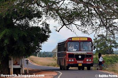 i love sltb_ www.ilovesltb.blogspot.com_SLTB_Sri lanka transport board_CTB