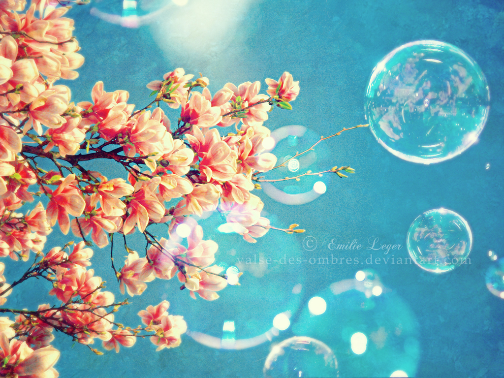 Spring images wallpaper hd q spring images mightylinksfo Gallery