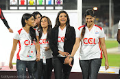 CCL 2 Launch Event at Sharja photos stills gallery-thumbnail-2