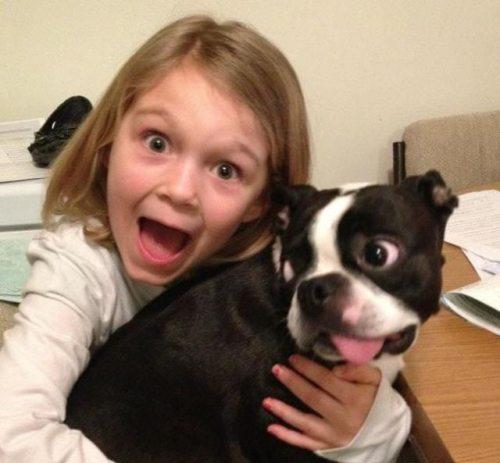 garota cão assustados lol humor melhores imagens da semana eu adoro morar na internet