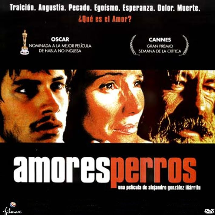 amores perros movie. Amores perros is a 2000