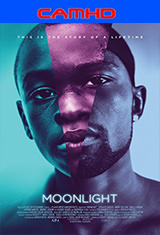 1 - Moonlight (Luz de luna) (2016) [CAMHD/Subtitulado] [Multi/MG]