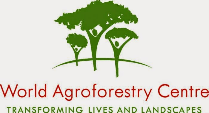 World Agroforestry Vacancy: Communications Officer - Bogor, Indonesian