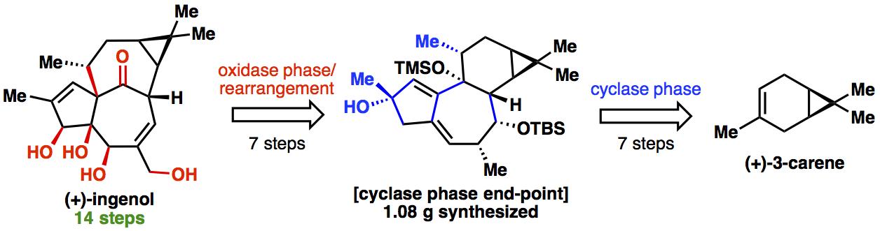 3-carene cyclase
