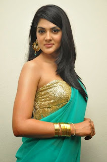 Actress Sakshi Chowdary Pictures in Saree at James Bond Audio Release Function  21