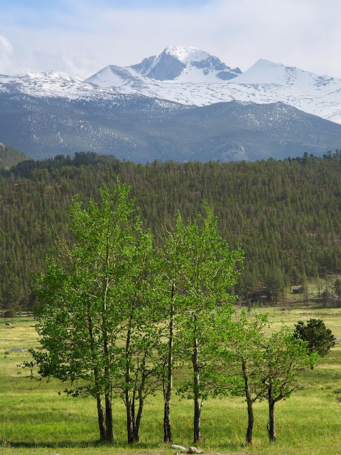 Longs Peak in Spring in Rocky Mountain National Park Moraine Park area