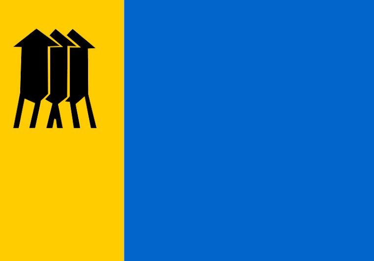 Bandeira do Município de Porto Velho