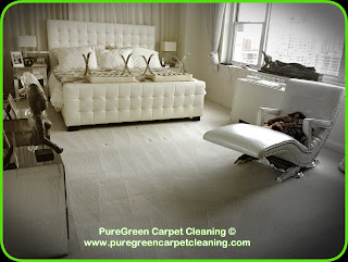 Green Carpet Cleaning NYC, How to remove stains from carpet, Organic Carpet Cleaners NY, Carpet Cleaning New York, Best Carpet Cleaning NYC, PureGreen Carpet Cleaning, non toxic, carpets in new york, wool carpet, luxury condo nyc