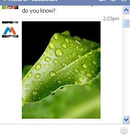 In Facebook we can only find only a photo attaching option into Facebook chat. Thus I searched somewhere else and I got a trick to insert an image into chat box while we are chatting to our beloved one. Now we can learn the new idea of sharing images on Facebook chatting.