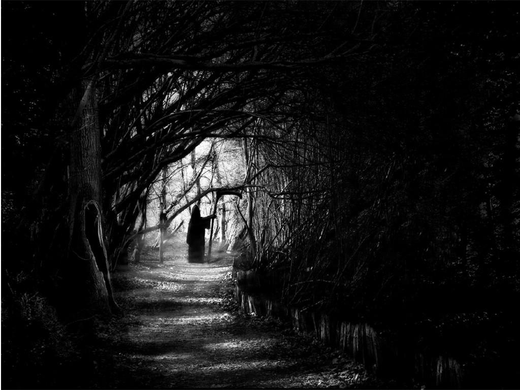 http://2.bp.blogspot.com/--UniVKzoiVs/Tbhtzya4d1I/AAAAAAAAAEU/NfBTNXl7lO0/s1600/dark-forest-night-image-31000.jpg