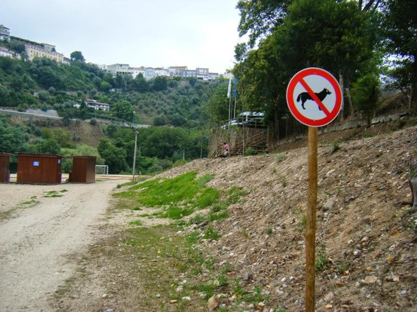 Animais proibidos na praia