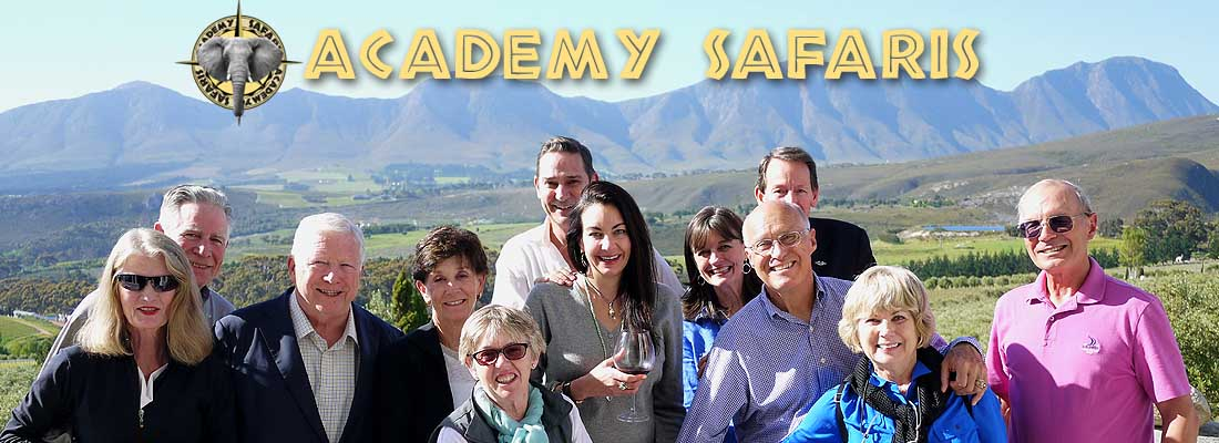 Academy Safaris