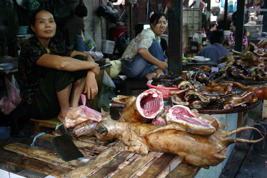 Cadáveres de perros hervidos y rostizados, a la venta en una carnicería callejera. Hanoi, Vietnam.