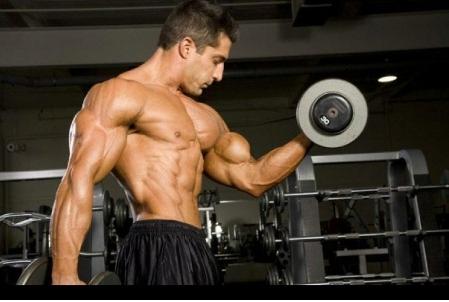 Чиста мускулна маса