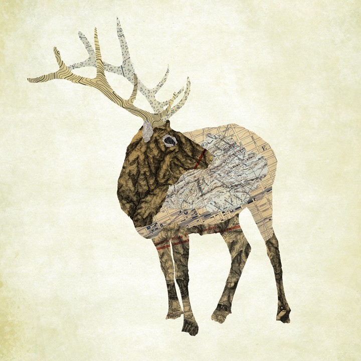 12-Elk-Moose-Jason-LaFerrera-Cartography-Shaped-to-make-Map-Animals-www-designstack-co