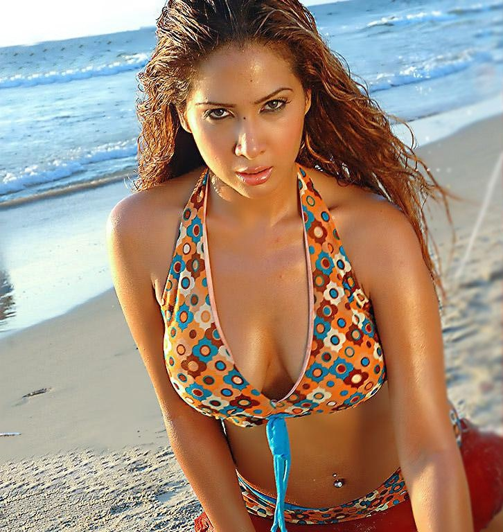 kim sharma hot coti pic xxx