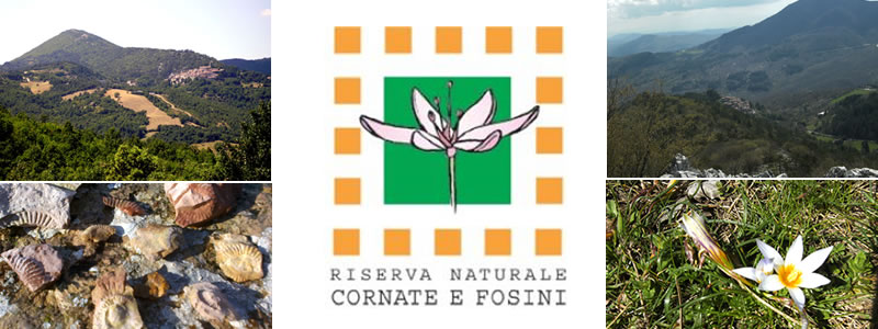 """Riserva Naturale - Nature Reserve """"Cornate e Fosini"""""""